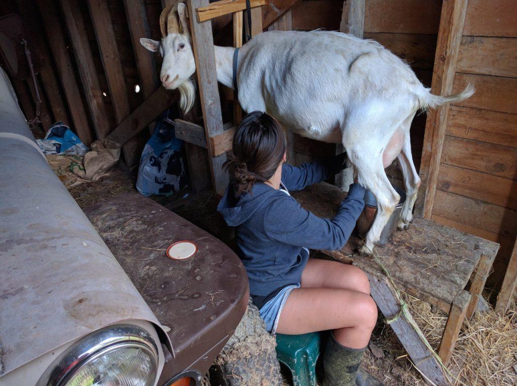 Aurélie avec sa chèvre