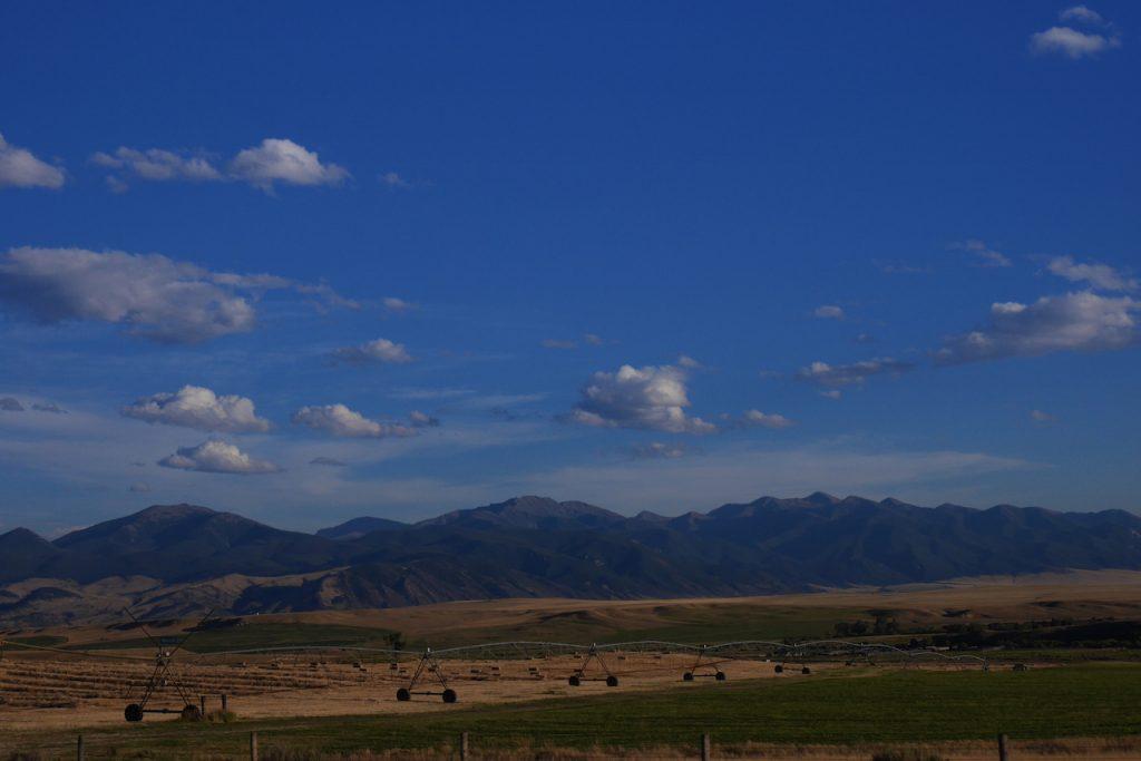 Des champs à n'en plus finir dans l'Idaho
