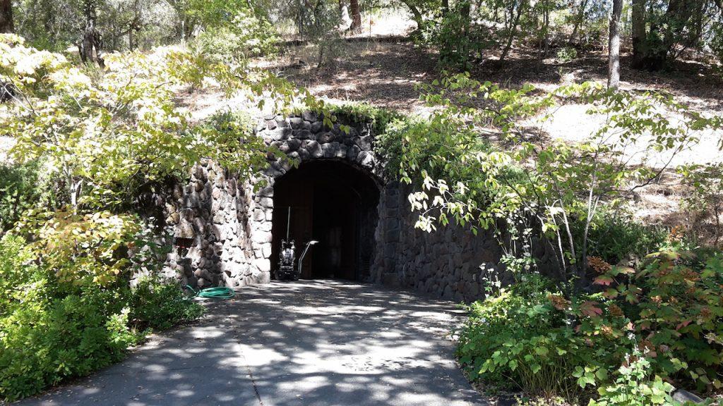 La cave de la winery Hafner