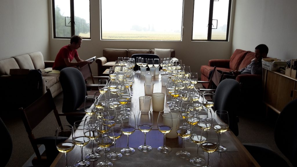 Blind tasting du Chardonnay et du Malbec