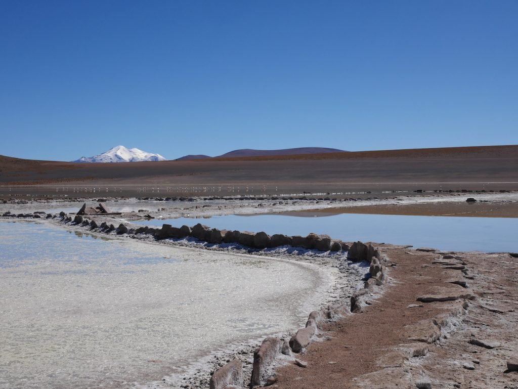 Les lagunes sont gorgées de borax