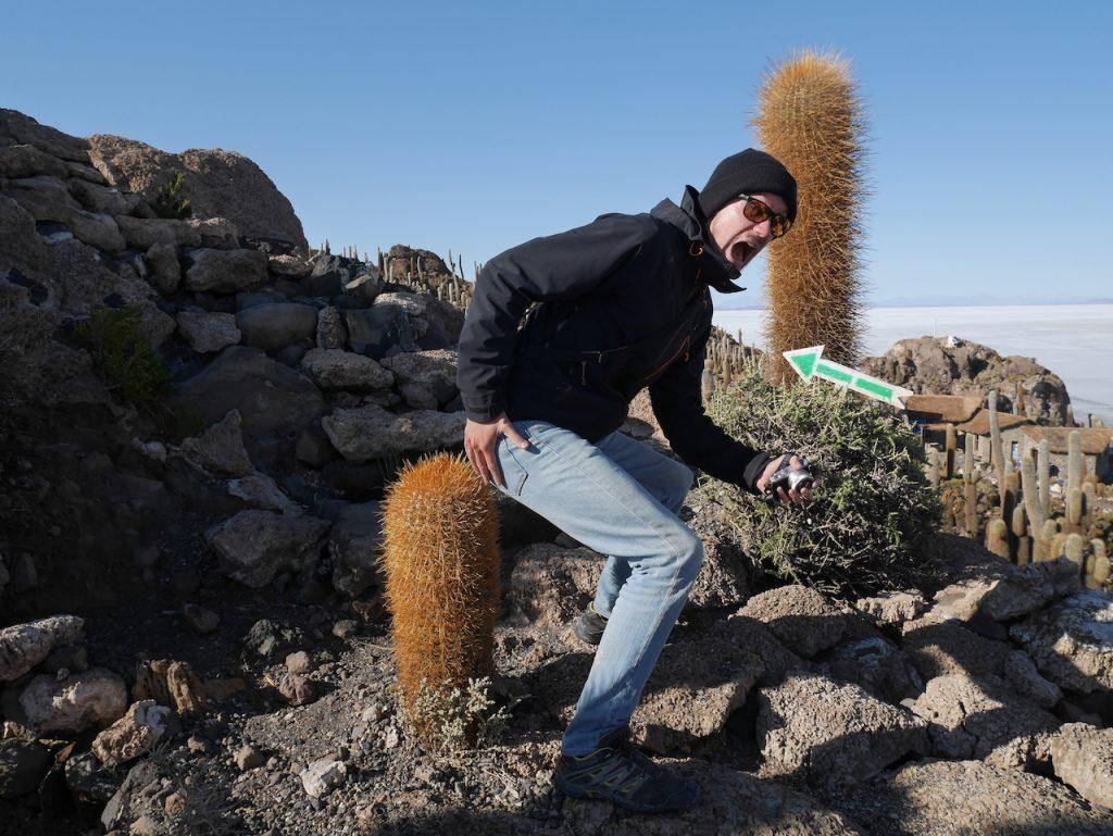 Cactus île Incahuasi